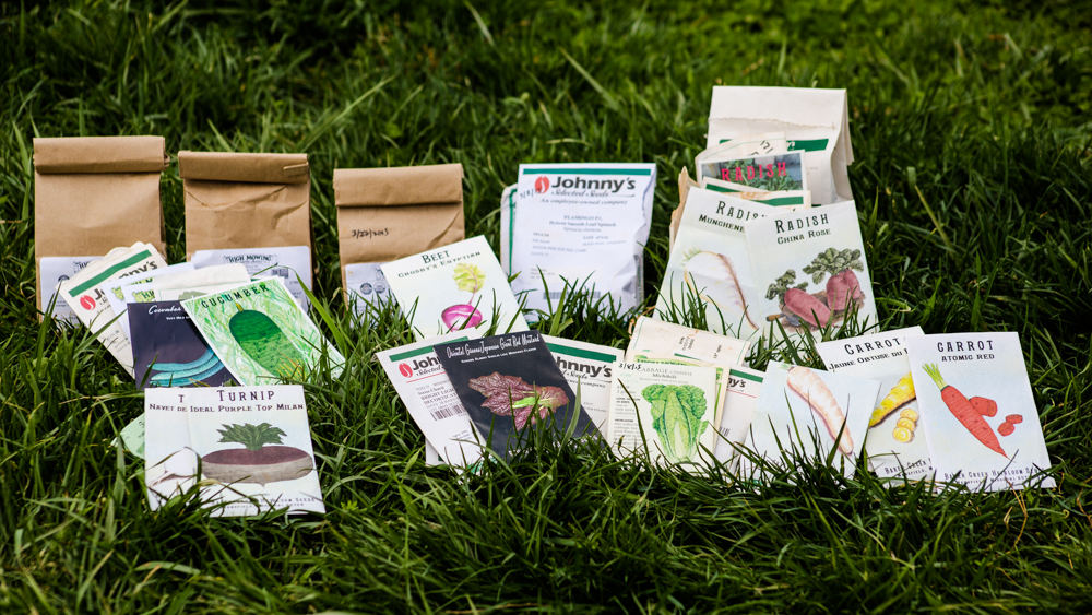 Vegetable Seed Packets